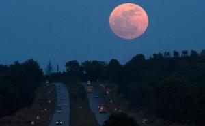 Blue Moon Berkshire